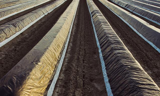 Sokoldalúan használható az agrofólia