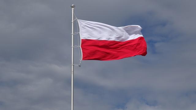 lengyel-magyar fordító